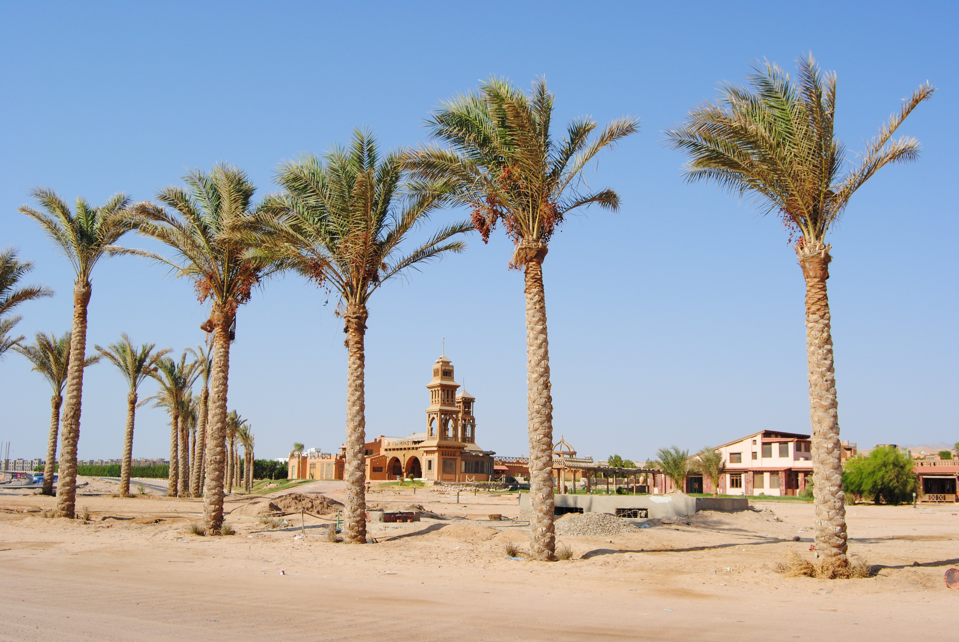 jeep safari in the desert _ Egypt