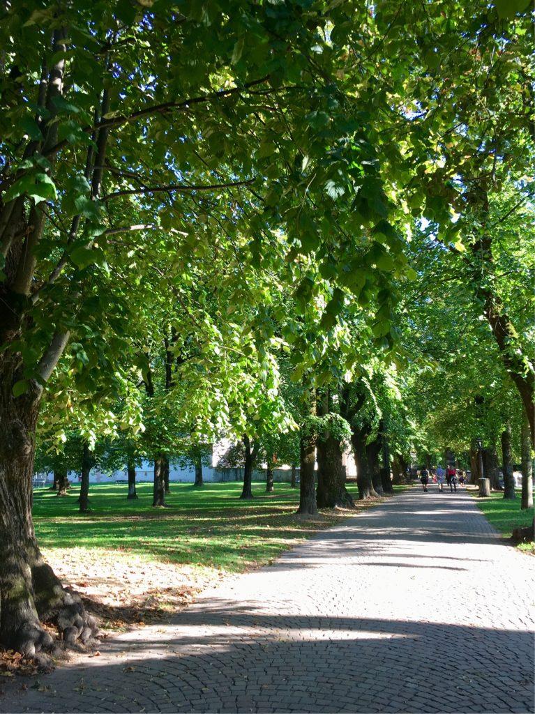Parco della Pieve, Cavalese