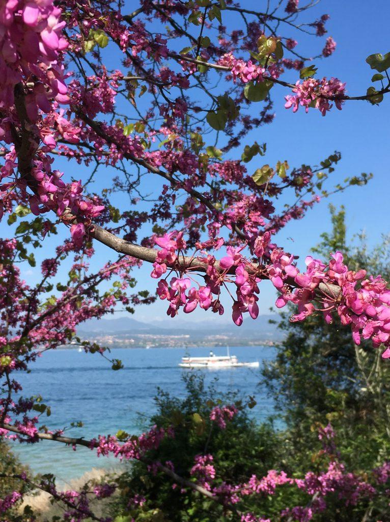 Viaggi di primavera_Sirmione