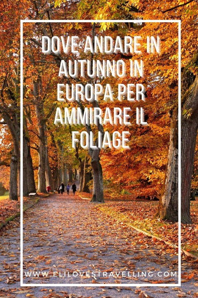 Dove andare in autunno in Europa per ammirare il foliage 1