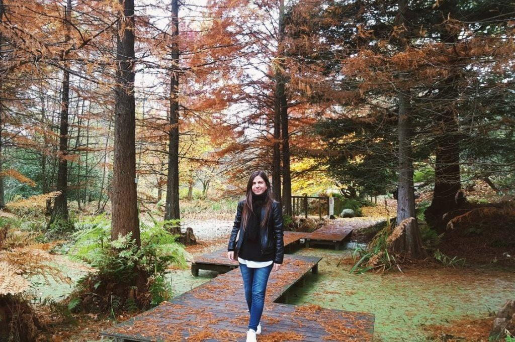 dove andare in autunno in Europa_foliage in Germania