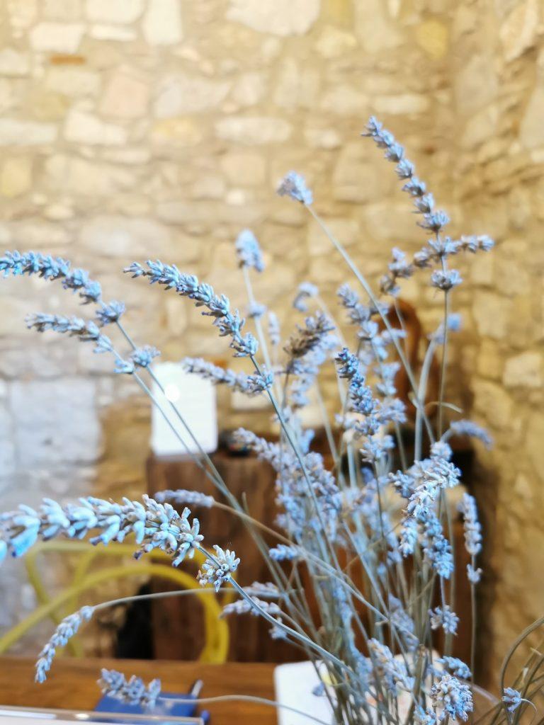 Fiori di lavanda a Corte Formigar in Valpolicella