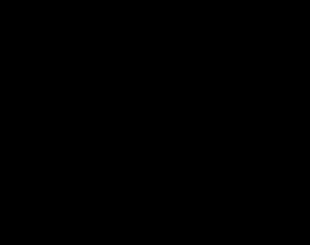 Raffigurazione in bianco e nero di Giuditta