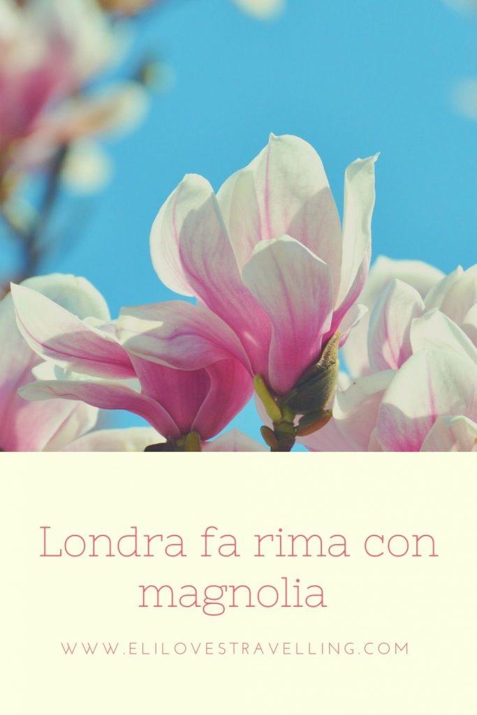 Londra fa rima con magnolia 1