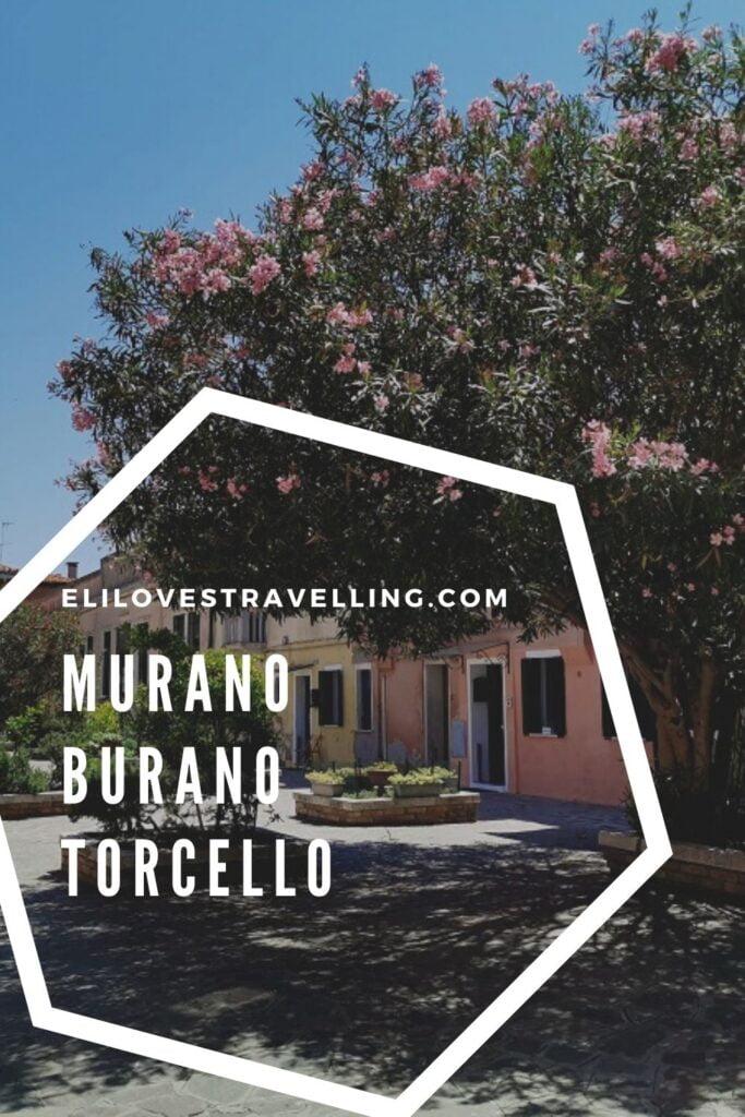 Visitare Murano Burano e Torcello_pin per pinterest