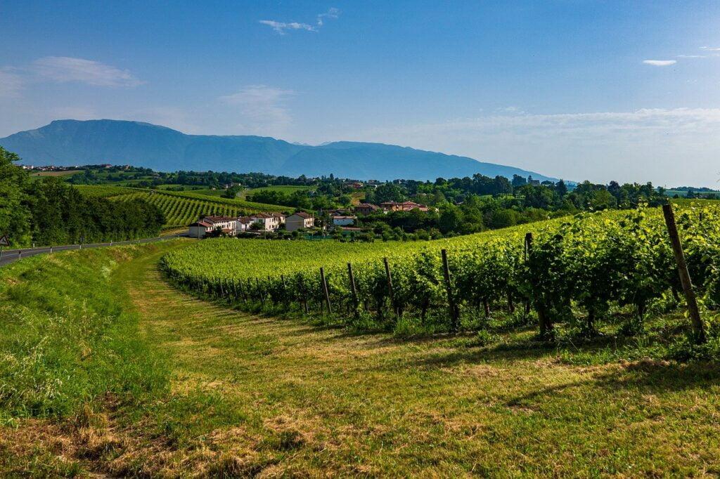 Autunno in Veneto_colline del prosecco