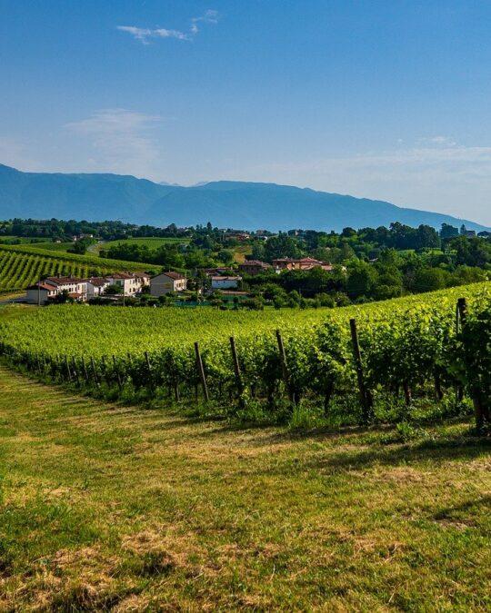 Autunno in Veneto: dove andare, cosa fare, eventi da non perdere