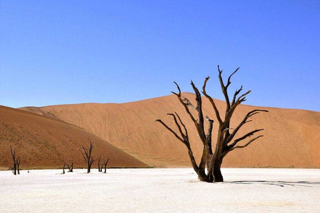 Namibia, viaggi da fare almeno una volta nella vita in Africa